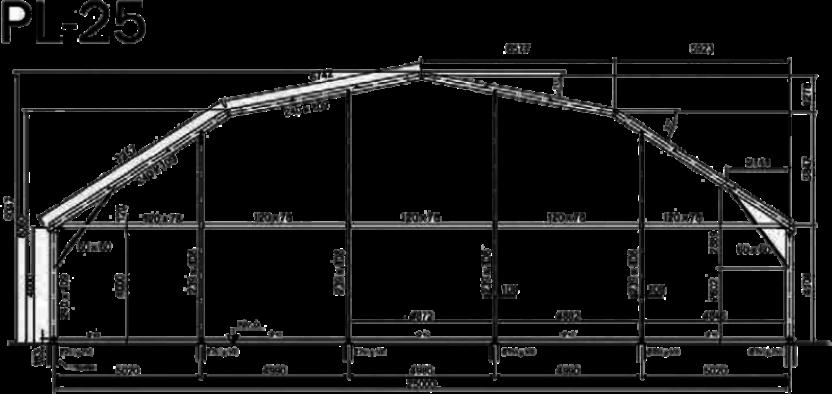 medida de carpa pl-25